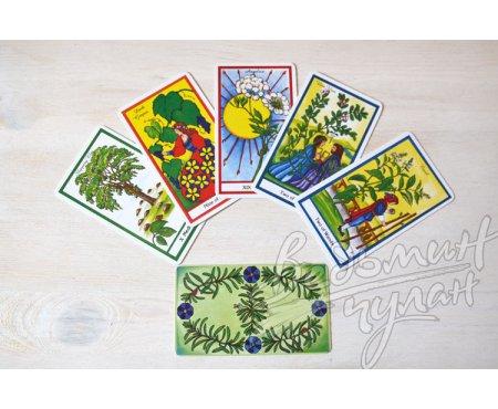 Таро Трав (Herbal Tarot)