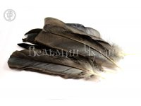 Перья вороны 12-14 см